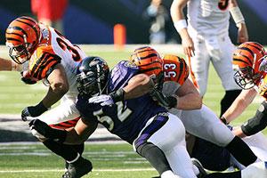 Ray Lewis - Baltimore Ravens